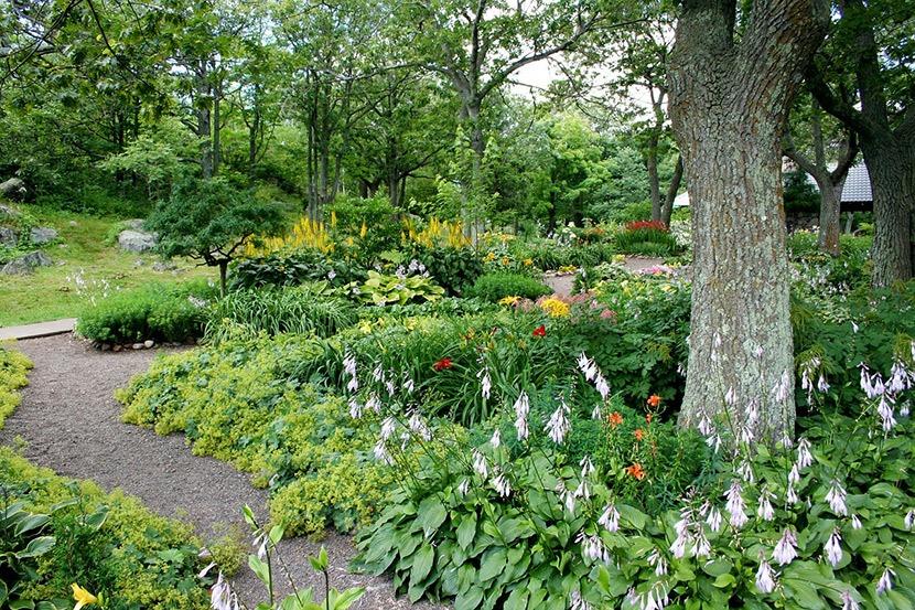 Flower Street Garden