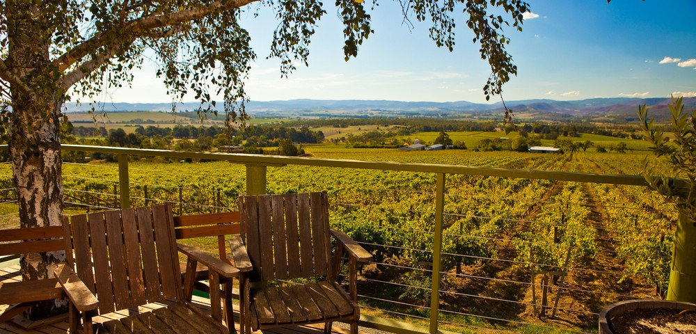 Enjoy the Sceneries in the Yarra Valley