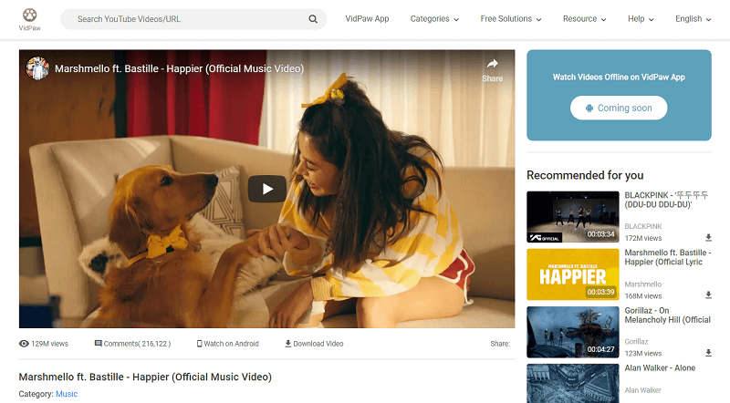 Video on VidPaw