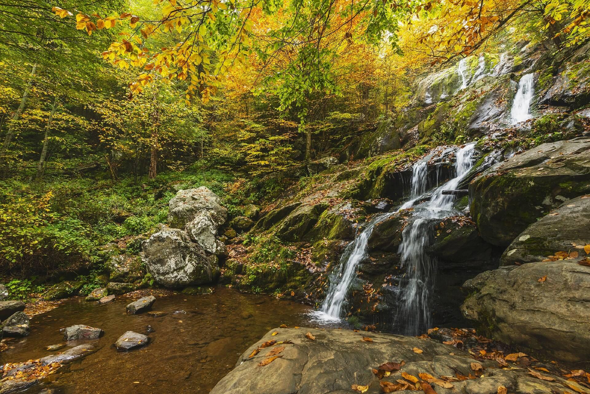 Shenandoah National Park, USA