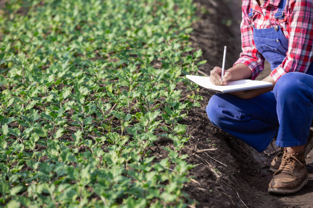 writing goals for Organic Farm