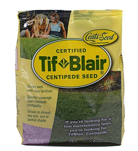 TifBlair Centipede Grass Seed Direct from The Farm