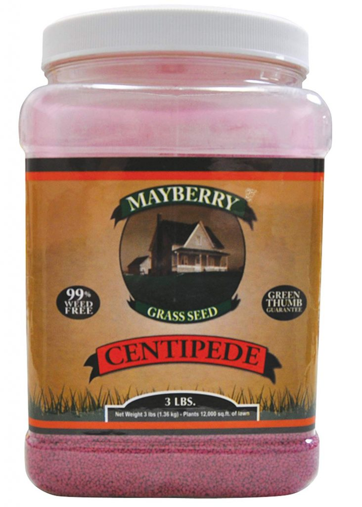 Mayberry Centipede Seed