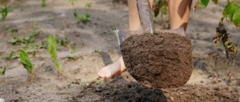 How much does a yard of topsoil weigh?