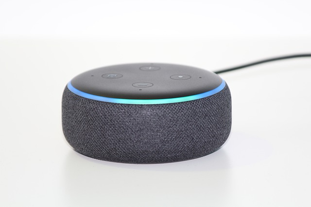 Troubleshoot The Alexa image