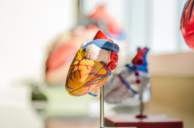 2. Heart Diseases, Blockages, and Strokes-