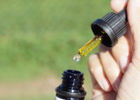 CBD Oral Drops