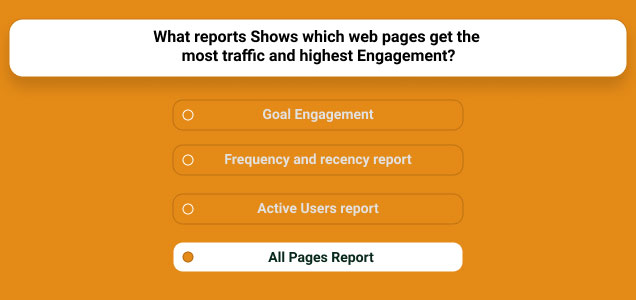 Web Pages Get The Most Traffic And Highest Engagement
