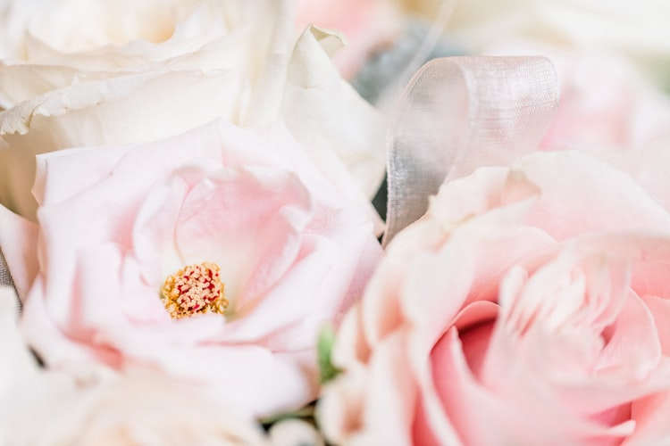 Faith Can Impact The Role And Importance Of Flowers
